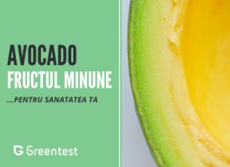 Beneficiile pentru sanatate ale fructului de avocado
