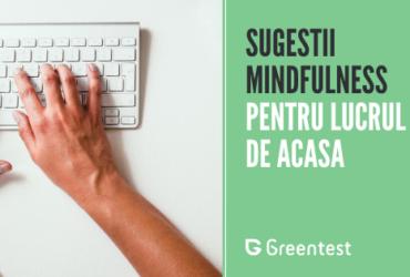 Cateva sugestii de mindfulness pentru lucrul de acasa